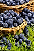 Fresh blueberries in wicker baskets