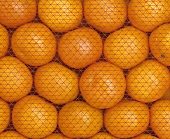 Crate of oranges with net, full-frame