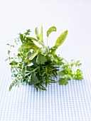 Bunch of herbs on checked fabric
