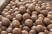 Unshelled macadamia nuts