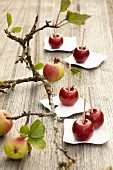 Chocolate apples: almond cream in chocolate with a fruit glaze