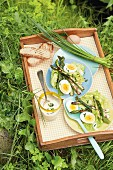 A mixed leaf salad with fried asparagus and boiled eggs on a tray in the grass