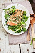 Salmon with a lemon crust on a bed of salad
