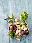 Old root vegetables and turnips in a crate