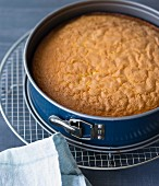 A baked sponge cake cooling in the baking tin