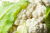 Cauliflower (close-up)