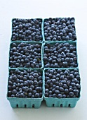 Six Cardboard Cartons of Blueberries