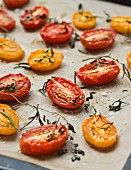 Oven roasted tomatoes on parchment paper