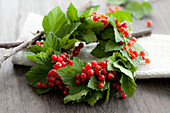 A wreath of redcurrants