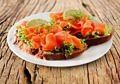 Open face sandwich with smokes salmon and lettuce