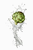 Water and artichoke