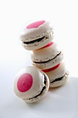 White chocolate macarons with blackberries