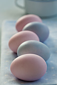 A row of pastel-coloured Easter eggs