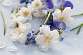 A small wreath of cherry blossoms and grape hyacinths
