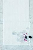 Blackberry on kitchen paper
