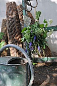 Watering can in front of a wooden ladder with a flower bouquet hanging on it