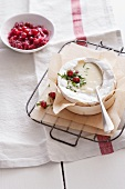 Grilled Camembert with red cabbage and redcurrants