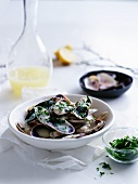 Mussels with lemon sauce and herbs