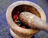 Ingredients for chilli paste in a mortar
