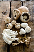 Button mushrooms, shimeji mushrooms and dried porcini mushrooms
