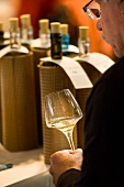 Blind wine tasting: A man tasting white wine