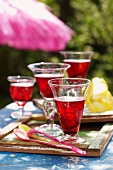 Hibiscus Cosmopolitans on a garden table