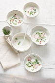 Yogurt soup with radishes, cucumber and tomatoes
