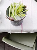 Celery stalks in a pail with ice cubes on a table (top view)