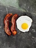 Fried egg and bacon (seen from above)