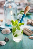 Carbonated lime drink with peppermint