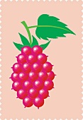 A raspberry with a leaf against a pink background (illustration)