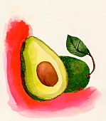Avocados (illustration)