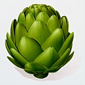 A green artichoke (illustration)