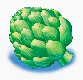 An artichoke (illustration)
