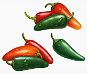 Red and green chillies (illustration)