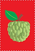 A custard apple with a leaf against a red background (illustration)
