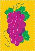 Purple grapes with leaves against a yellow background (illustration)