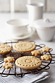 Shortbread with cinnamon and orange peel, on a cooling rack