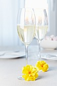 Glass of sparkling wine decorated with tissue paper pompoms