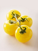 Yellow tomatoes of the variety 'Golden Bison'
