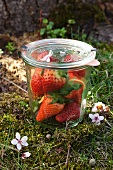 Fresh strawberries in a preserving jar