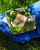 Fish terrine made from three different types of fish, on a bed of salad leaves
