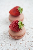Chocolate macaroons each topped with a fresh strawberry