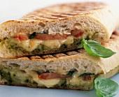 Cheese, tomato and pesto panini