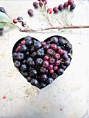 An aronia berry heart