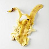 Banana Splat