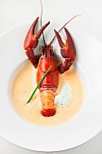 Crawfish bisque (crayfish soup, USA)