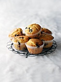 Blueberry muffins on a wire rack