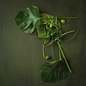 An arrangement of exotic leaves with limes