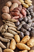 Assorted types of potatoes on a wooden surface
